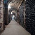 Margalleau cellar