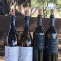 Revik bottles