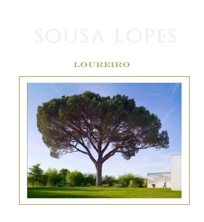 Sousa Lopes Vinho Verde Loureiro